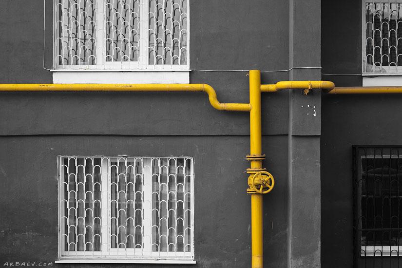 Желтый питон