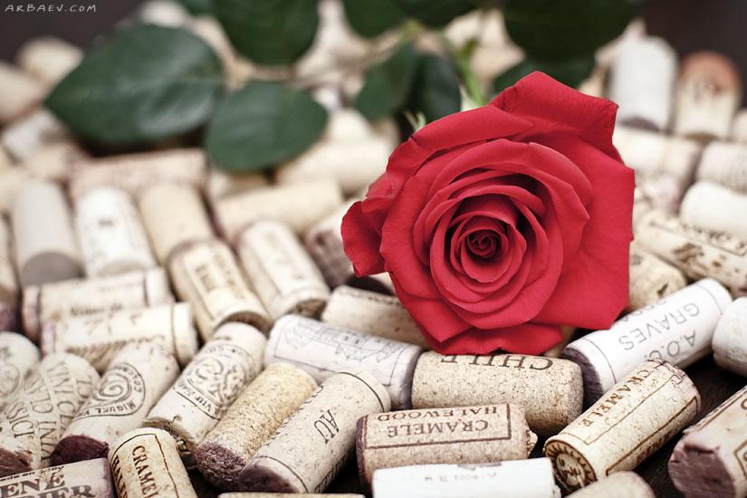 Пробки и Роза