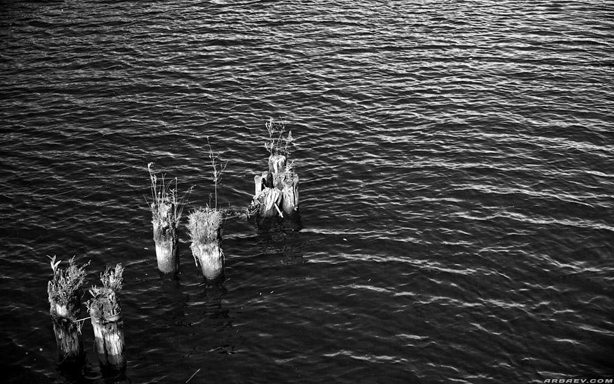 Столбы в воде