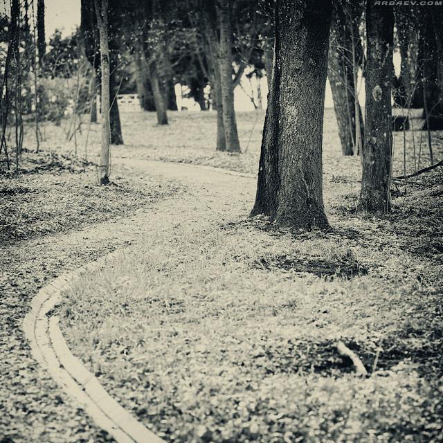 Осенний триптих 3