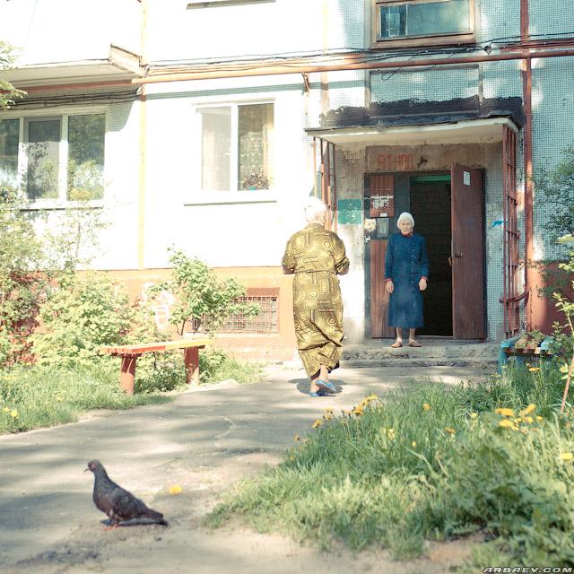Птица мира во дворах реализма 2