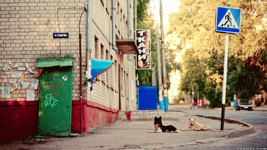 улица Емлютина