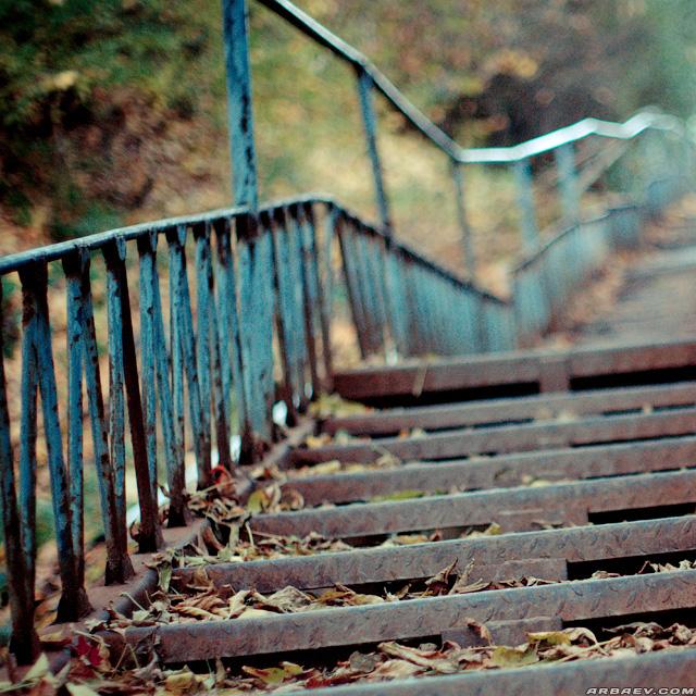 Осенняя лестница